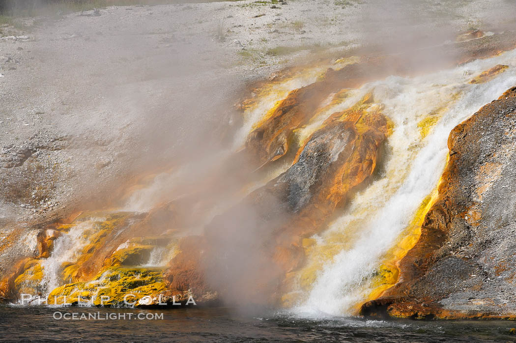 Thermophilac heat-loving bacteria color the runoff canals from Excelsior Geyser as it empties into the Firehole River. Midway Geyser Basin, Yellowstone National Park, Wyoming, USA, natural history stock photograph, photo id 13601