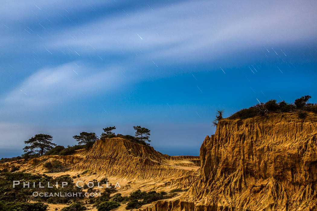 Torrey Pines State Reserve at Night, stars and clouds fill the night sky, the Pacific Ocean in the distance. Torrey Pines State Reserve, San Diego, California, USA, natural history stock photograph, photo id 28402