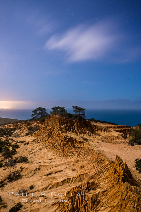 Torrey Pines State Reserve at Night, stars and clouds fill the night sky with the lights of La Jolla visible in the distance. San Diego, California, USA, natural history stock photograph, photo id 28404