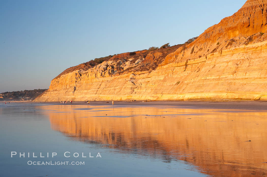 Sandstone cliffs rise above the beach at Torrey Pines State Reserve. Torrey Pines State Reserve, San Diego, California, USA, natural history stock photograph, photo id 14726