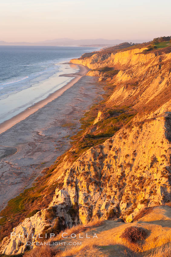Black's Beach and Sandstone cliffs at Torrey Pines State Park, viewed from high above the Pacific Ocean near the Indian Trail. Torrey Pines State Reserve, San Diego, California, USA, natural history stock photograph, photo id 14770