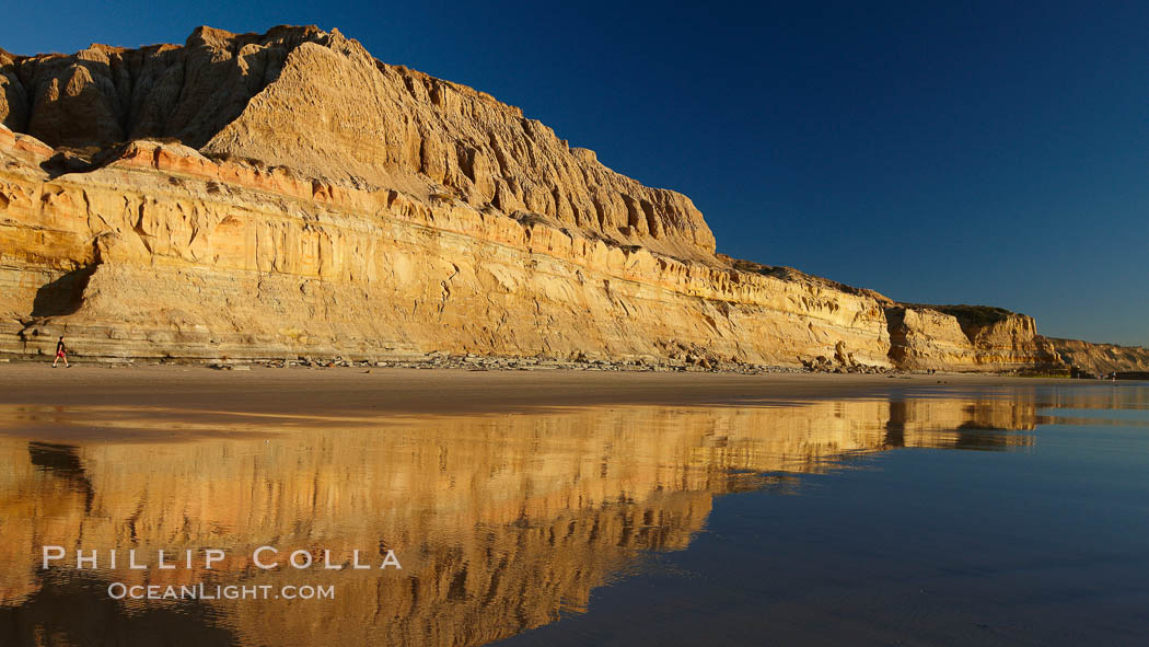 Torrey Pines State Beach, sandstone cliffs rise above the beach at Torrey Pines State Reserve. Torrey Pines State Reserve, San Diego, California, USA, natural history stock photograph, photo id 22444