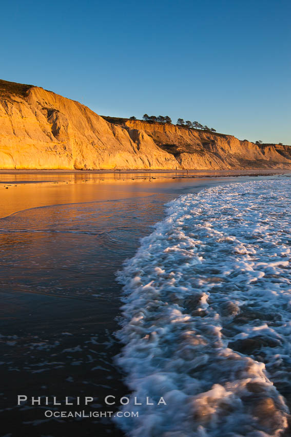 Torrey Pines State Beach, sandstone cliffs rise above the beach at Torrey Pines State Reserve. San Diego, California, USA, natural history stock photograph, photo id 27248