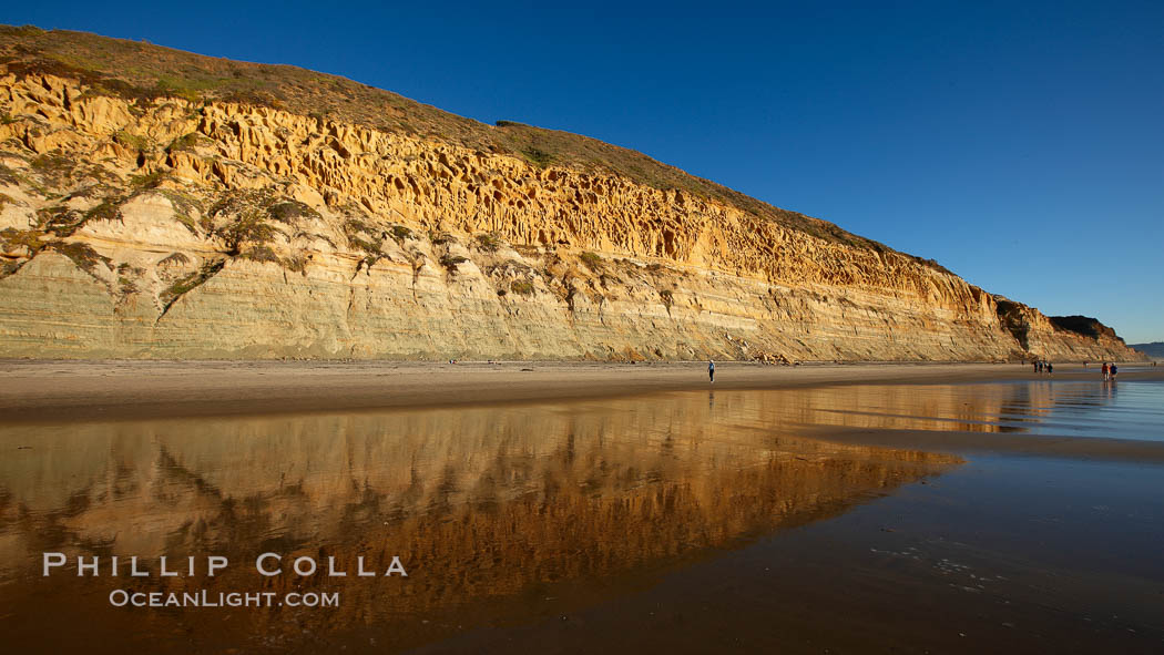 Torrey Pines State Beach, sandstone cliffs rise above the beach at Torrey Pines State Reserve. Torrey Pines State Reserve, San Diego, California, USA, natural history stock photograph, photo id 22443