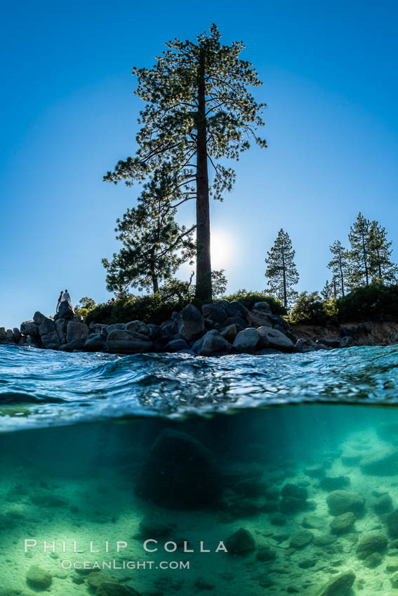 Trees and rocks in Lake Tahoe, Sand Harbor State Park. Nevada, USA, natural history stock photograph, photo id 36414