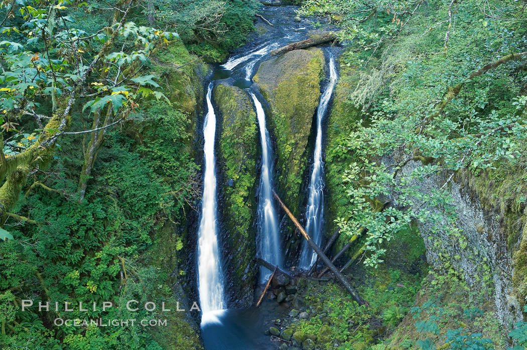 Triple Falls, a trio of falls dropping 130 feet in the upper part of Oneonta Gorge. Triple Falls, Columbia River Gorge National Scenic Area, Oregon, USA, natural history stock photograph, photo id 19328