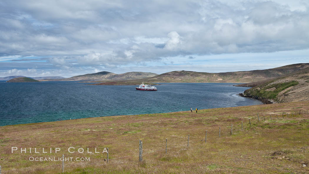 Typical grasslands of the Falkland Islands, a pastoral setting with old wooden fence and rolling fields, icebreaker ship M/V Polar Star at anchor just offshore. New Island, United Kingdom, natural history stock photograph, photo id 23804
