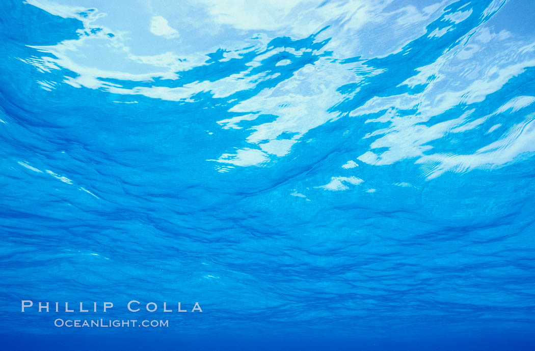 The ocean surface, seen from underwater, ripples with waves and wind and bright sunlight. Bahamas, natural history stock photograph, photo id 00700