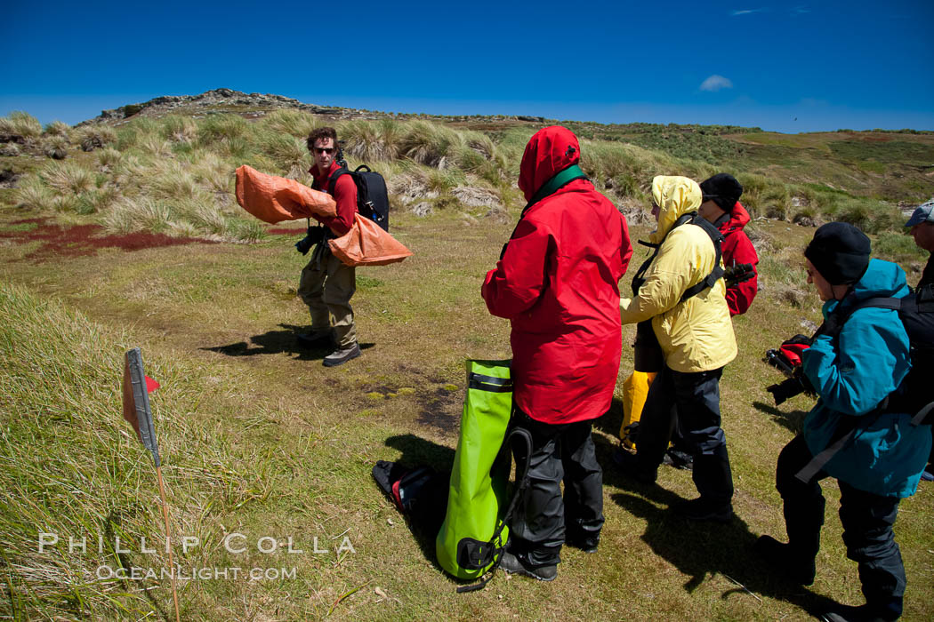 Visitors walk across Carcass Island, named for the HMS Carcass which surveyed the island in 1766. Falkland Islands, United Kingdom, natural history stock photograph, photo id 24069