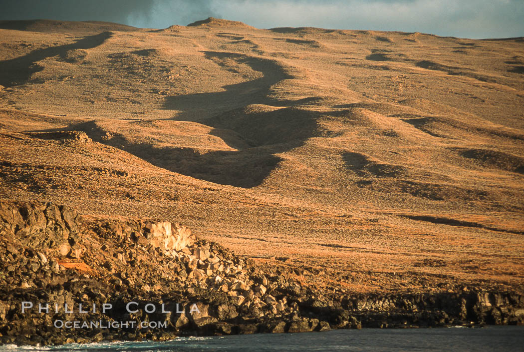 Volcanic cones, landscape, south end of Isla Guadalupe. Guadalupe Island (Isla Guadalupe), Baja California, Mexico, natural history stock photograph, photo id 03072