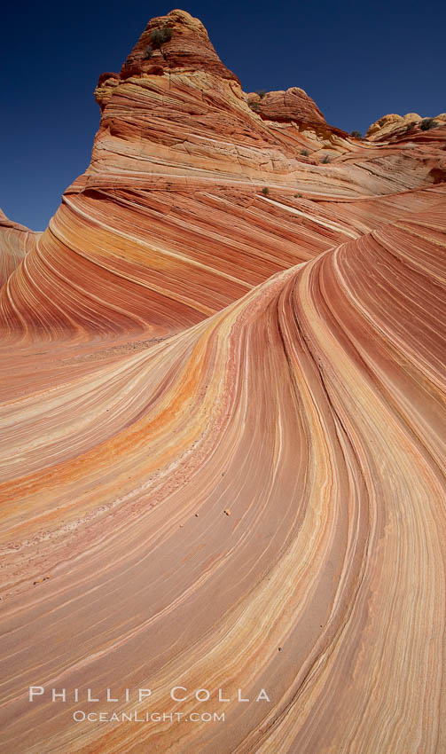 The Wave, an area of fantastic eroded sandstone featuring beautiful swirls, wild colors, countless striations, and bizarre shapes set amidst the dramatic surrounding North Coyote Buttes of Arizona and Utah.  The sandstone formations of the North Coyote Buttes, including the Wave, date from the Jurassic period. Managed by the Bureau of Land Management, the Wave is located in the Paria Canyon-Vermilion Cliffs Wilderness and is accessible on foot by permit only. North Coyote Buttes, Paria Canyon-Vermilion Cliffs Wilderness, Arizona, USA, natural history stock photograph, photo id 20673