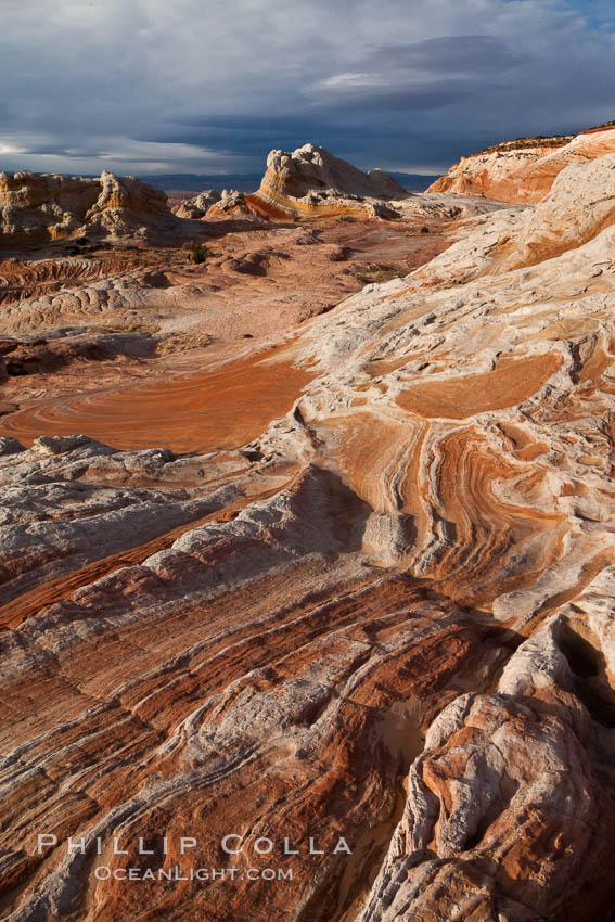 White Pocket, sandstone forms and colors are amazing. White Pocket, Vermillion Cliffs National Monument, Arizona, USA, natural history stock photograph, photo id 26658