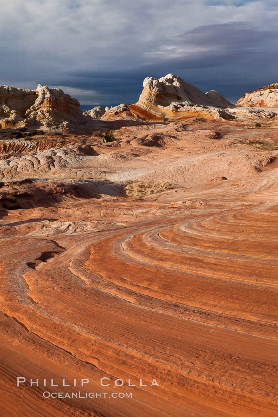 White Pocket, sandstone forms and colors are amazing. Vermillion Cliffs National Monument, Arizona, USA, natural history stock photograph, photo id 26605