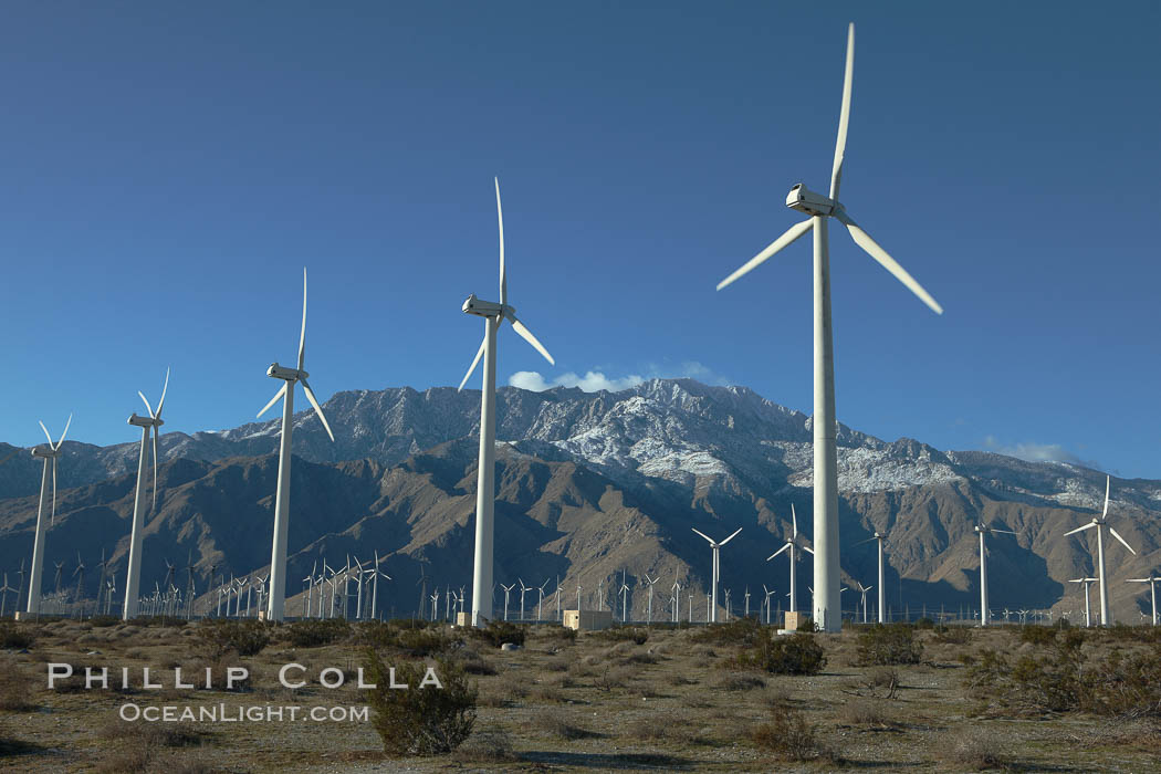 Wind turbines, rise above the flat floor of the San Gorgonio Pass near Palm Springs, with snow covered Mount San Jacinto in the background, provide electricity to Palm Springs and the Coachella Valley. California, USA, natural history stock photograph, photo id 22208