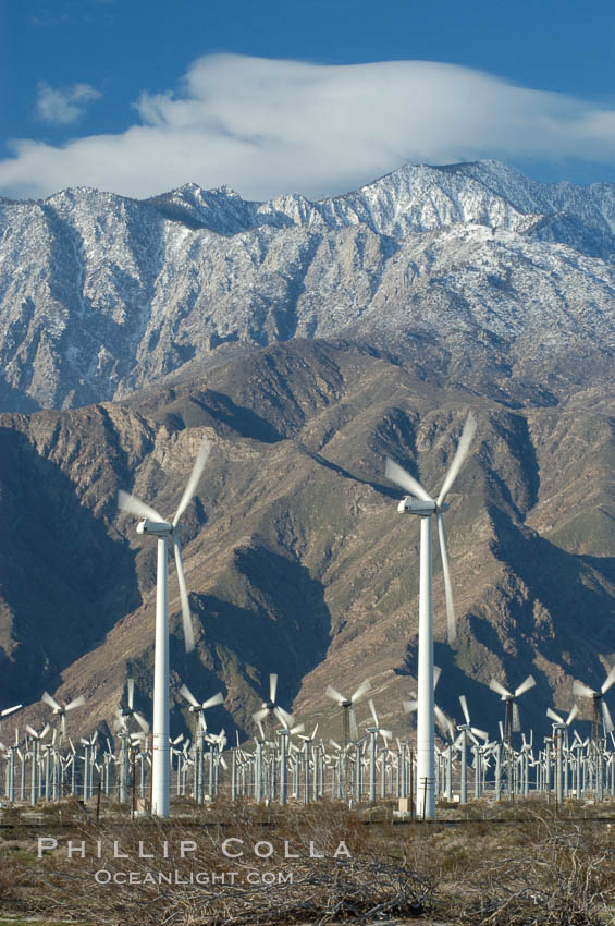 Wind turbines provide electricity to Palm Springs and the Coachella Valley. San Gorgonio pass, San Bernardino mountains. San Gorgonio Pass, California, USA, natural history stock photograph, photo id 06891