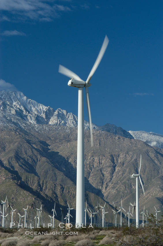 Wind turbines provide electricity to Palm Springs and the Coachella Valley. San Gorgonio pass, San Bernardino mountains. San Gorgonio Pass, Palm Springs, California, USA, natural history stock photograph, photo id 06904