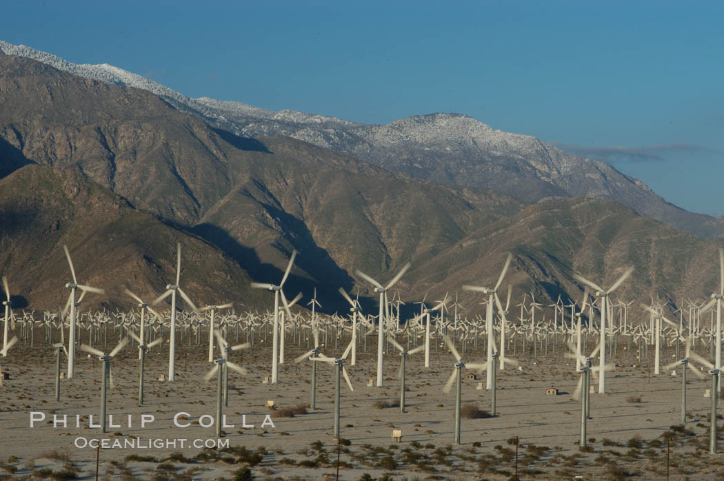Image 06911, Wind turbines provide electricity to Palm Springs and the Coachella Valley. San Gorgonio pass, San Bernardino mountains. San Gorgonio Pass, Palm Springs, California, USA, Phillip Colla, all rights reserved worldwide. Keywords: california, coachella valley, desert, electricity, energy, palm springs, power generation, san gorgonio pass, san gorgonio pass wind farm, science and technology, usa, wind farm, wind power, wind turbine, windmill.