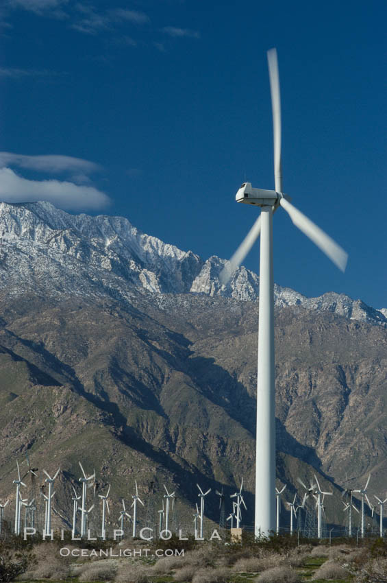 Wind turbines provide electricity to Palm Springs and the Coachella Valley. San Gorgonio pass, San Bernardino mountains. San Gorgonio Pass, California, USA, natural history stock photograph, photo id 06901