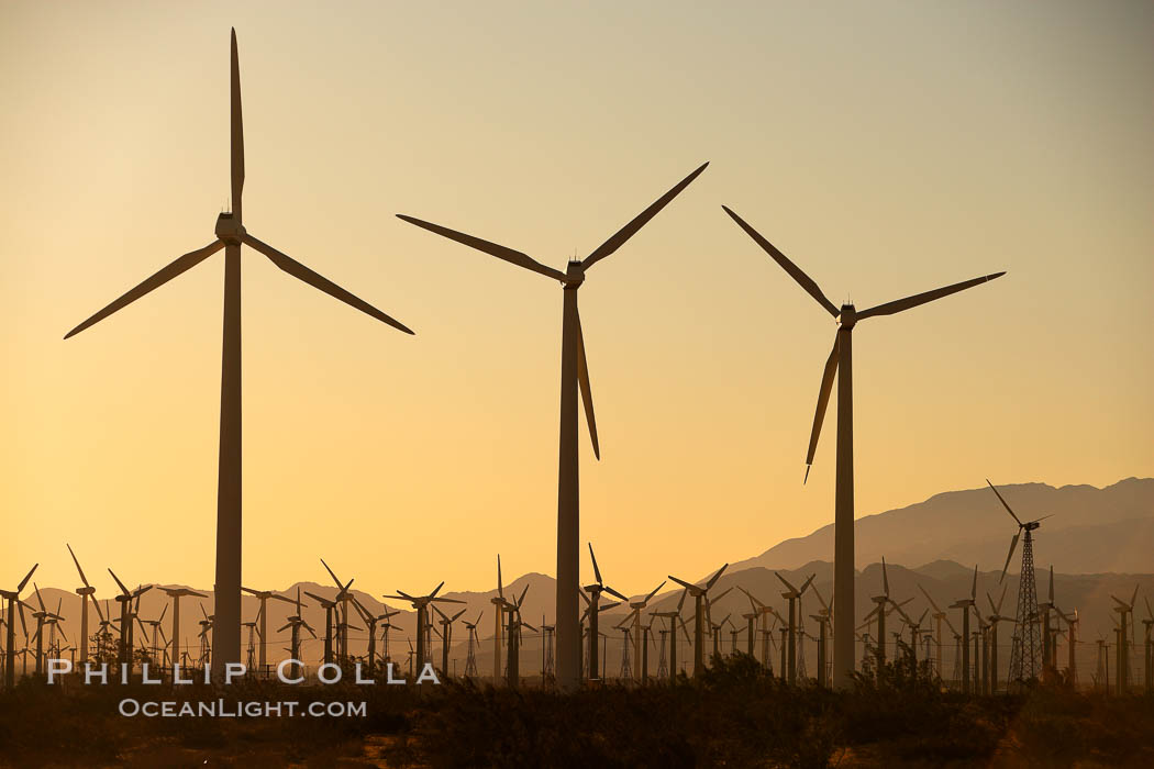 Wind turbines at sunrise, in the San Gorgonio Pass, near Interstate 10 provide electricity to Palm Springs and the Coachella Valley. California, USA, natural history stock photograph, photo id 22242