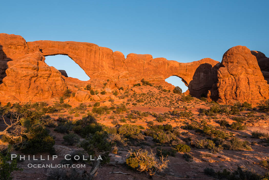 Windows at Sunrise, Arches National Park. Windows, Arches National Park, Utah, USA, natural history stock photograph, photo id 29279
