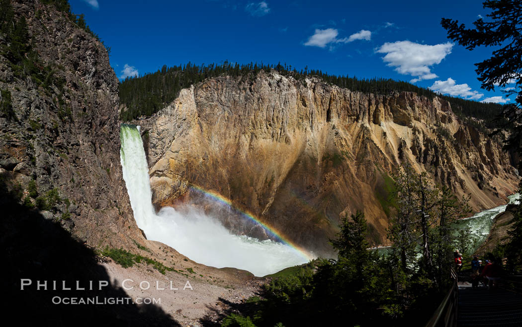 Panorama of Yellowstone Falls from Uncle Tom's Trail.  Lower Yellowstone Falls shows a beautiful rainbow as it cascades 308' in a thundering plunge into the Grand Canyon of the Yellowstone River. Yellowstone National Park, Wyoming, USA, natural history stock photograph, photo id 26957
