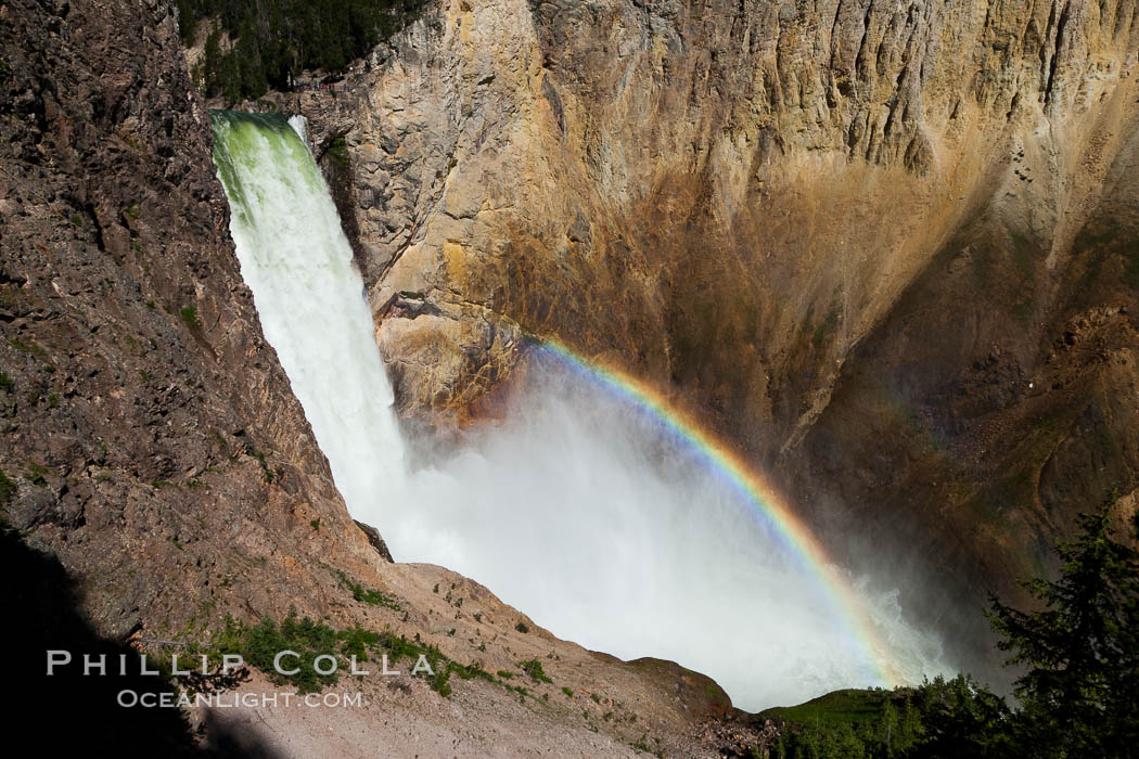 Yellowstone Falls from Uncle Tom's Trail.  Lower Yellowstone Falls shows a beautiful rainbow as it cascades 308' in a thundering plunge into the Grand Canyon of the Yellowstone River. Grand Canyon of the Yellowstone, Yellowstone National Park, Wyoming, USA, natural history stock photograph, photo id 26942