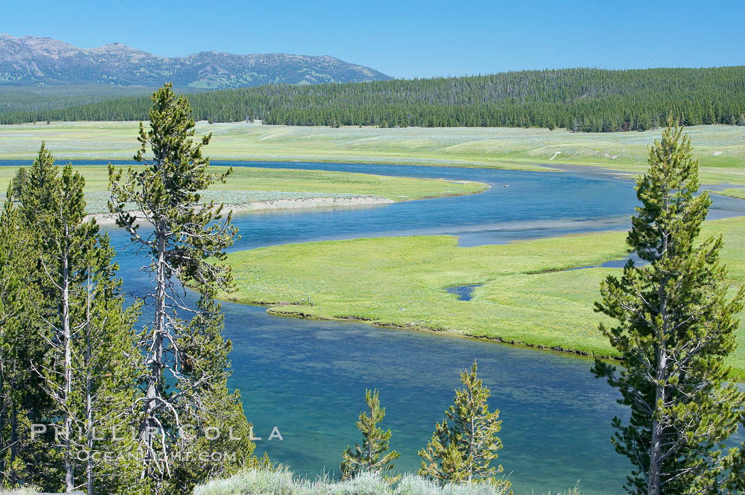 The Yellowstone River flows through the Hayden Valley. Hayden Valley, Yellowstone National Park, Wyoming, USA, natural history stock photograph, photo id 13347
