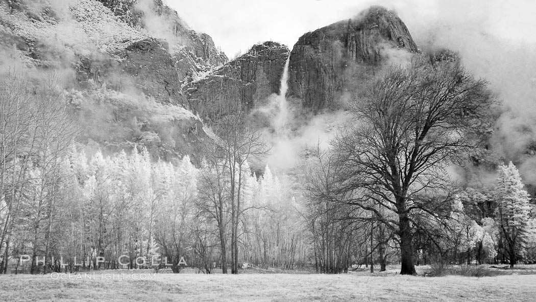 Image 22767, Yosemite Falls, mist and and storm clouds. Yosemite National Park, California, USA, Phillip Colla, all rights reserved worldwide. Keywords: california, cascade, environment, flow, infrared, infrared photography, landscape, national parks, nature, outdoors, outside, panasonic lumix, scene, scenery, scenic, sierra, sierra nevada, usa, water, waterfall, world heritage sites, yosemite, yosemite falls, yosemite national park, yosemite park, yosemite valley.