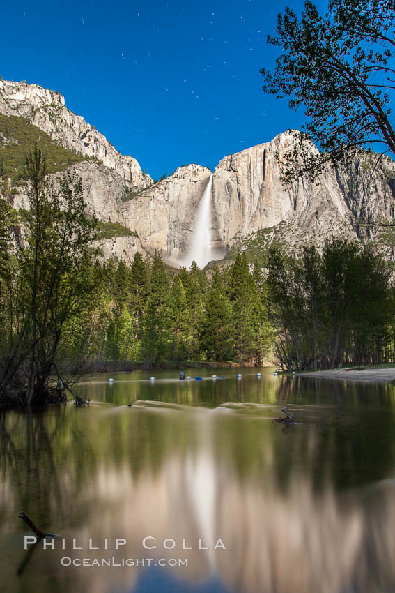 Yosemite Falls reflected in the Merced River, illuminated by moonlight, spring. Yosemite Falls, Yosemite National Park, California, USA, natural history stock photograph, photo id 27759