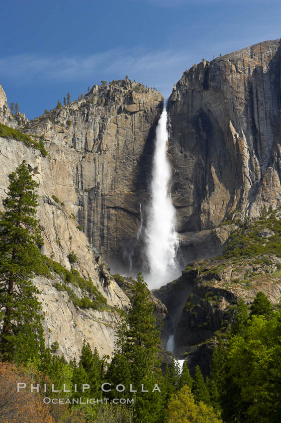 Yosemite Falls at peak flow in late spring, viewed from Cooks Meadow. Yosemite Falls, Yosemite National Park, California, USA, natural history stock photograph, photo id 12631