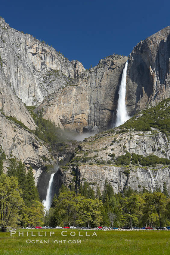 Yosemite Falls rises above Cooks Meadow.  The 2425 falls, the tallest in North America, is at peak flow during a warm-weather springtime melt of Sierra snowpack.  Yosemite Valley. Yosemite National Park, California, USA, natural history stock photograph, photo id 16138