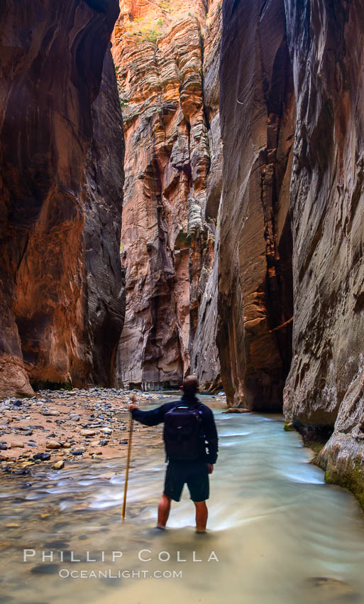 The Virgin River Narrows, where the Virgin River has carved deep, narrow canyons through the Zion National Park sandstone, creating one of the finest hikes in the world. Virgin River Narrows, Zion National Park, Utah, USA, natural history stock photograph, photo id 32625